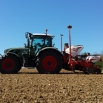 Maize Drilling and Fertilisers
