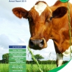Dairy Costings Focus Report