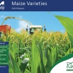 Maize Report 2014