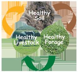 healthy-soil